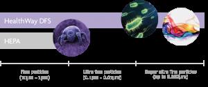 healthway-dfs-chart-purple